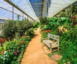 la energia agrovoltaica atersa
